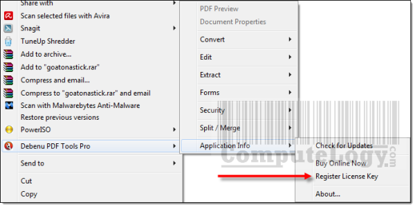 Debenu PDF Tools Pro 2.2 Registration Procedure